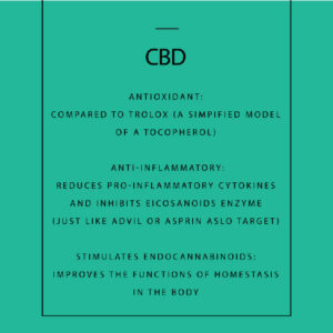 CBD powerful antioxidant